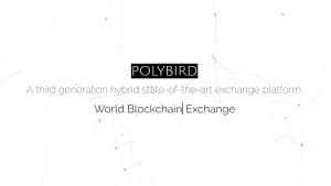 Polybird company logo