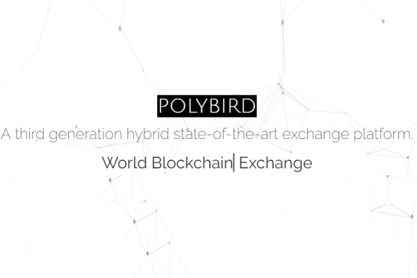 Polybird will use 'Chinese Walls' to make 'Most Financial Assets' Tokenized