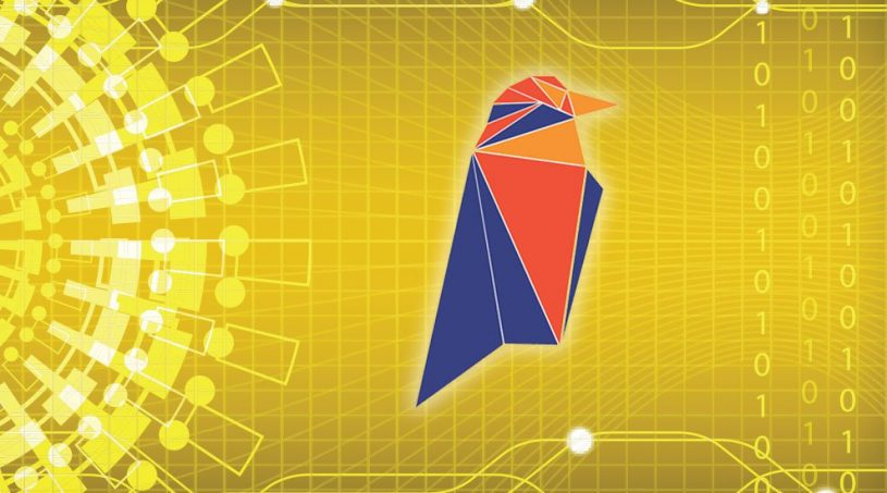 Ravencoin Asset Layer Goes Live After Slight Panic
