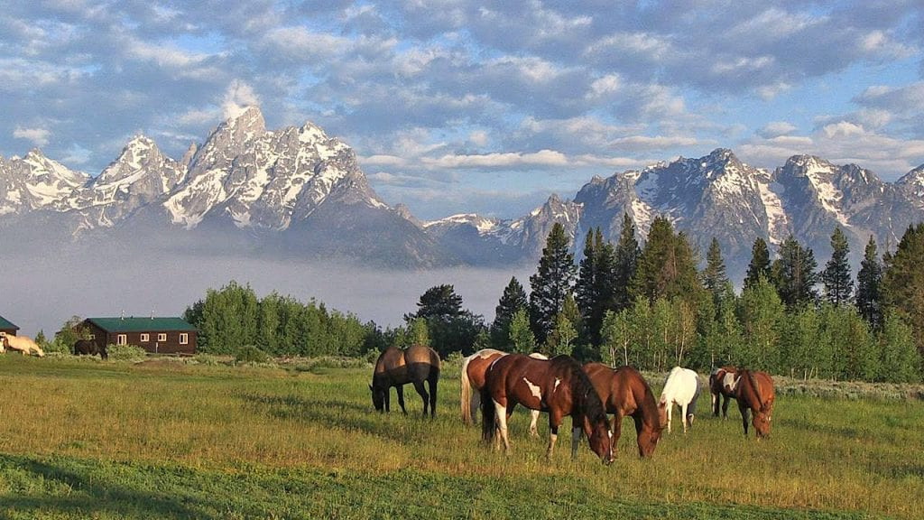 Wyoming Becoming an Unexpected Blockchain Hub
