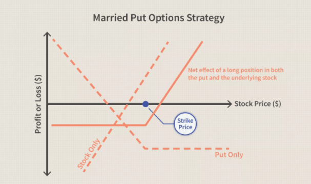 Married Put Options Strategy